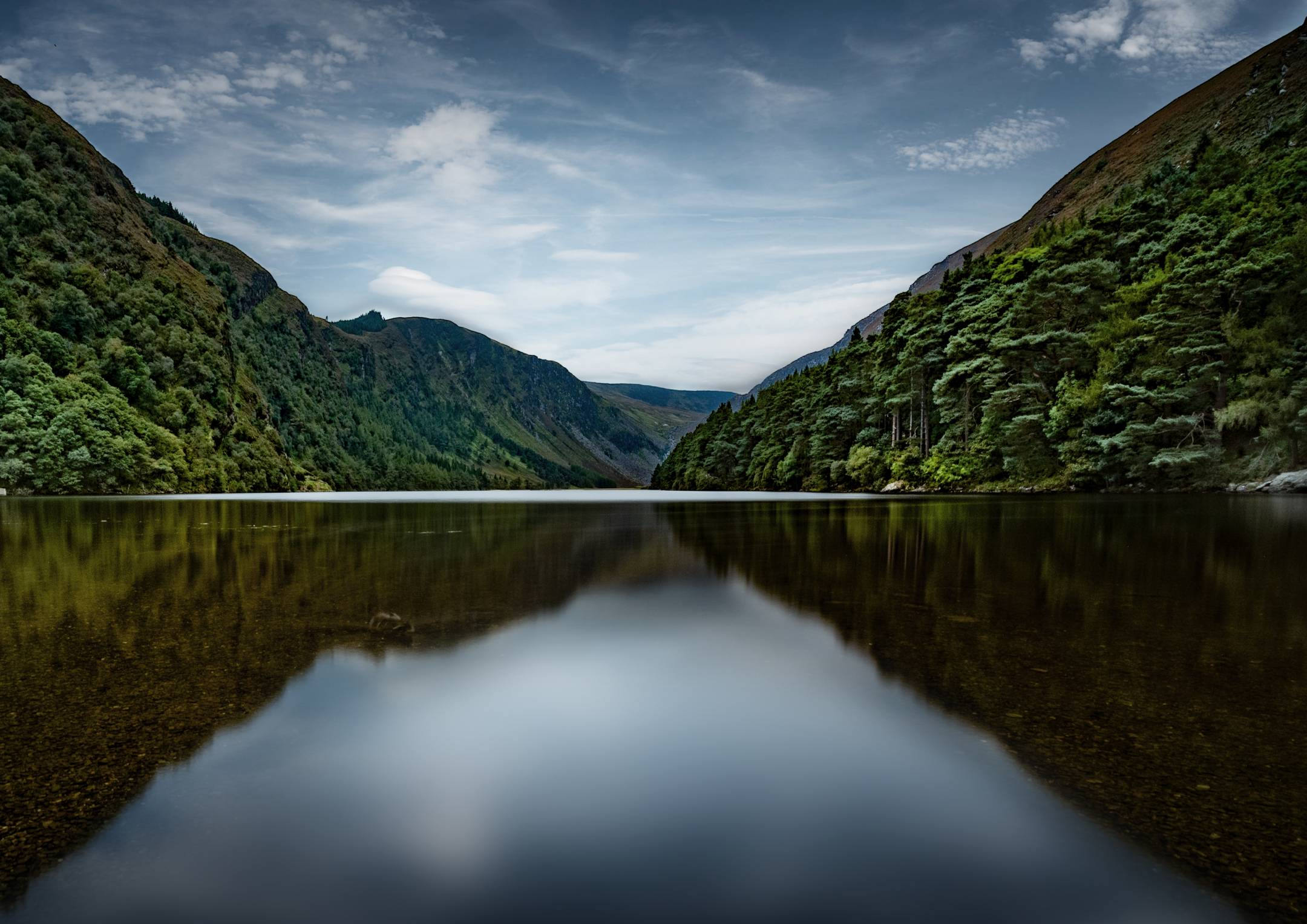 Glendalough_Bloom