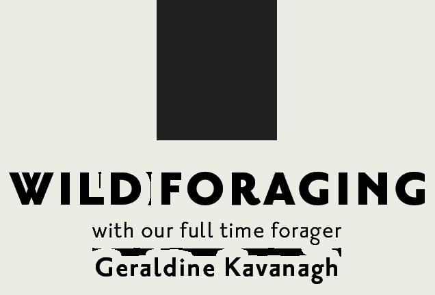 lock-up-go-foraging4
